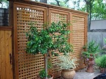 Amazing 9+ Backyard Privacy Fence Landscaping Ideas On A Budget 03
