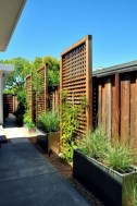 Amazing 9+ Backyard Privacy Fence Landscaping Ideas On A Budget 05