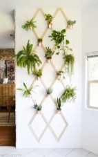 15+ Amazing Nature Decoration In Your Home With Beautiful Indoor Plants Idea 04