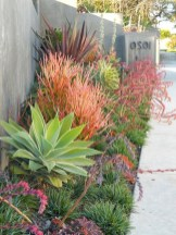 58+ Beautiful Low Maintenance Front Yard Landscaping Ideas (46)