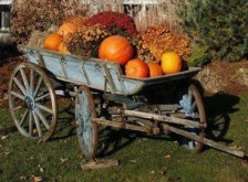 28+ Inspiring to Decorate Garden Carts for Fall (14)