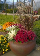 88+ Amazing Fall Container Gardening Ideas (15)