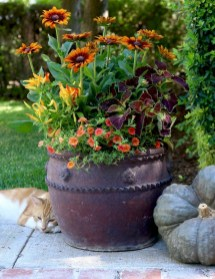 88+ Amazing Fall Container Gardening Ideas (20)