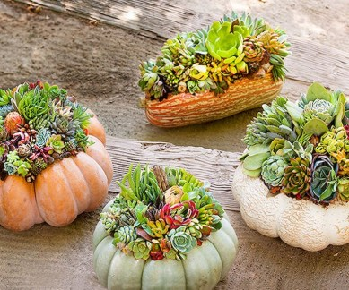 88+ Amazing Fall Container Gardening Ideas (25)