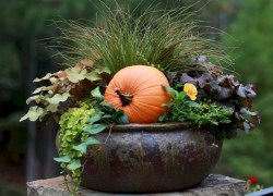 88+ Amazing Fall Container Gardening Ideas (46)