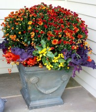 88+ Amazing Fall Container Gardening Ideas (54)