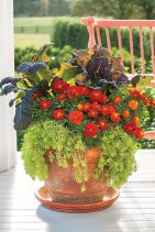 88+ Amazing Fall Container Gardening Ideas (6)