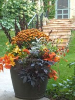 88+ Amazing Fall Container Gardening Ideas (88)