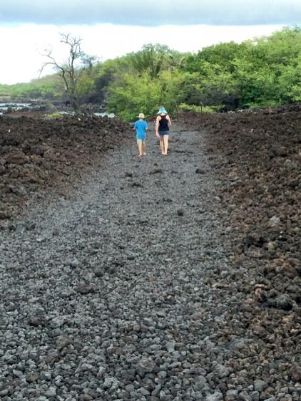 Lava Rock Road La Perouse Bay Maui