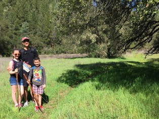 Codfish Falls Trail family hike in Placer County