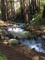 Hiking Limekiln Trails in Big Sur And Crossing Limekiln Creek