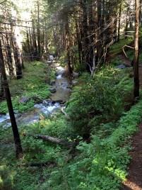 Limekiln Trail Follows Limekiln Creek