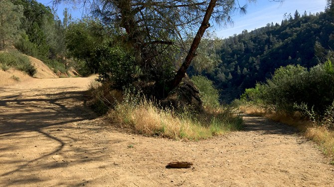 Side Trail of the Canyon Creek Trail to base of Mountain Quarries Railroad Bridge