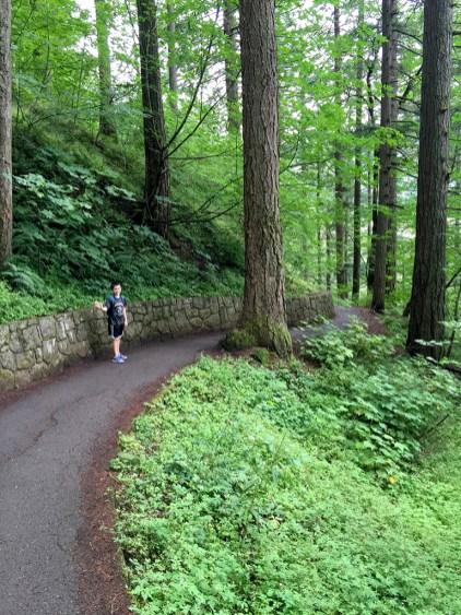 Wahkeena Falls Hiking Trail
