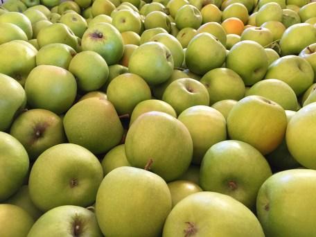 Abel's Apple Acres Fresh Apples