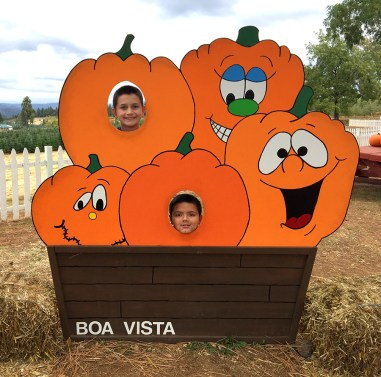 Boa Vista Farms Pumpkin Patch at Apple Hill