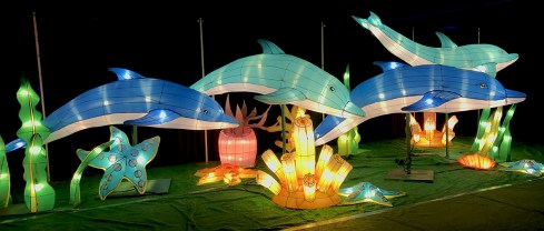 Under The Sea Dolphin Holiday Lanterns