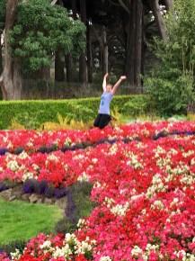 Family Picnic Spot in Golden Gate Park