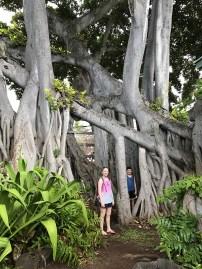 Hulihe'e Palace Gardens in Kona