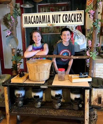 Hamakua Macadamia Nut Cracker
