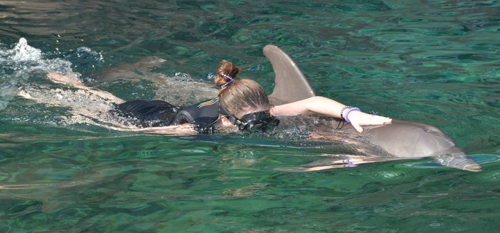 Natalie Bourn Swimming With Dolphins