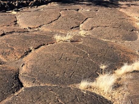 Puako Petroglyph Archaeological District in Waimea, Hawaii
