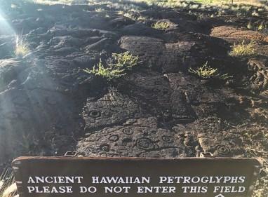Waikoloa Ancient Hawaiian Petroglyphs