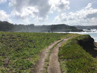 Carter and Natalie Bourn On The Russian Gulch Headlands Trail