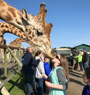 Natalie Bourn Giving a Giraffe A Kiss At B Bryan Preserve