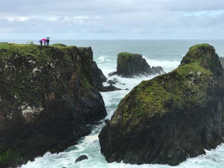 Exploring The Northern California Coastline in Fort Bragg