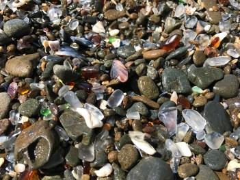 Rocks, Sea Shells, and Sea Glass along the Northern California Coastline