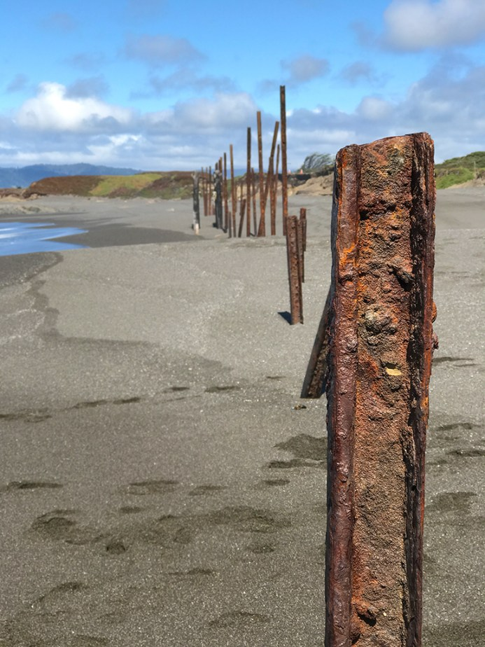Rusty Trestle Posts on the Beach at MacKerricher State Park
