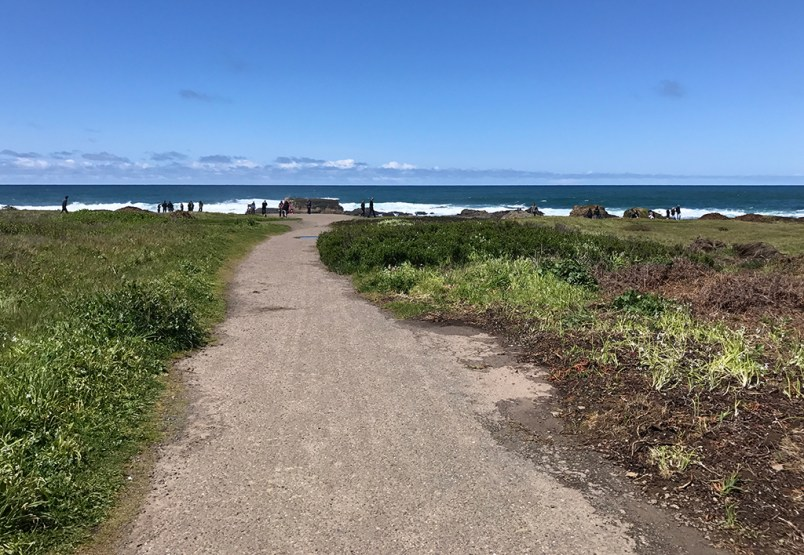 Trail From The Parking Lot To Glass Beach