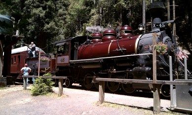 Historic Skunk Train Rides