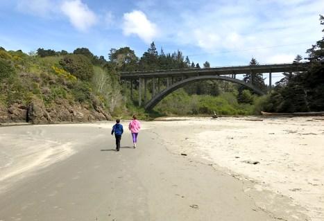 Walking the Beach at Jug Handle State Natural Reserve
