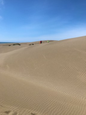 Walking the Inglenook Fen Ten Mile Dunes