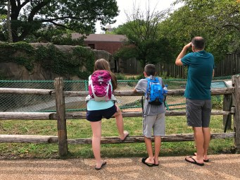Family Visit to the Lincoln Park Zoo