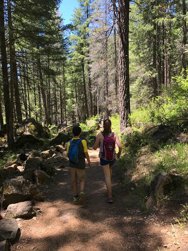 Hiking The McCloud Falls Trail with Kids