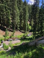 Plaikni Falls Trail View