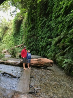 Brian and Carter Standing on a plank across the creek in fern canyon