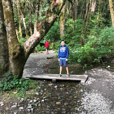 Getting To Fern Canyon