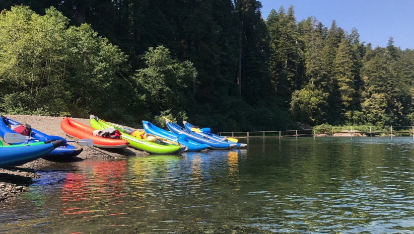 Kayaks lined up on the beach in Redwood National and State Parks