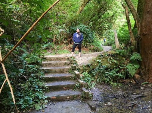 Stairs out of Fern Canyon