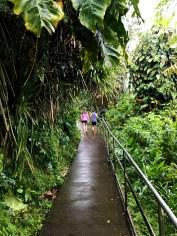 Natalie and Carter walking the Akaka Falls Trail