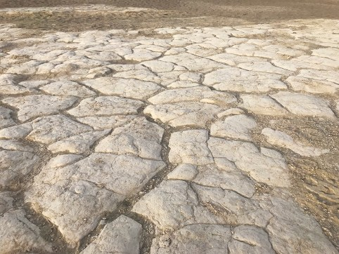 Polygon-Shaped Cracked Clay Ancient Lakebed