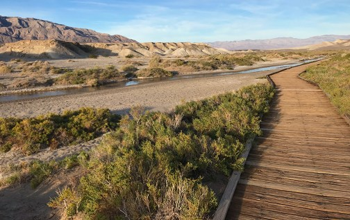 Salt Creek Interpretive Trail in Death Valley National park