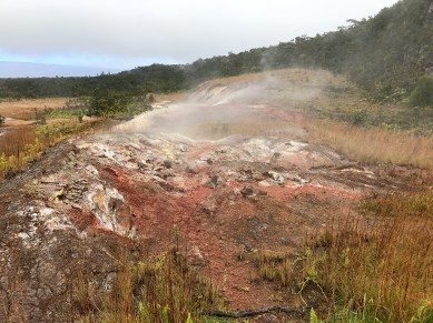 Smelly Sulfur Banks in Hawaii