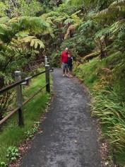 Walking the Trail to the Thurston Lava Tube