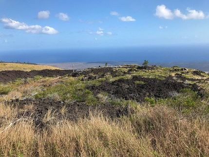 View from the Kealakomo Lookout