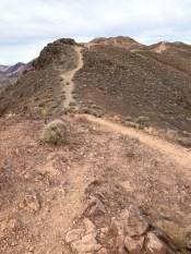 Dante's View Trail